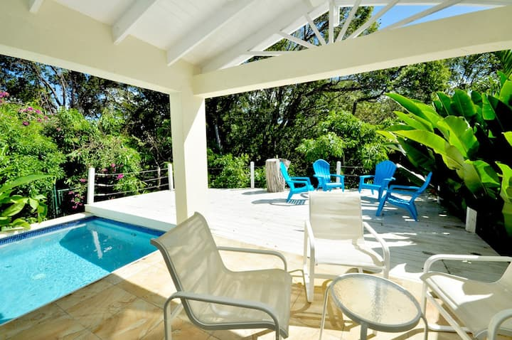 Barbados Villa with pool