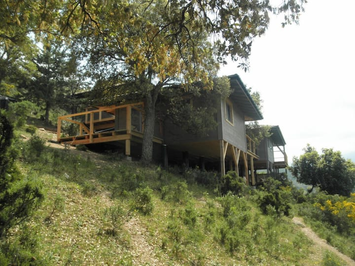 Lodge in the trees, 3kms from St Florent, Corsica
