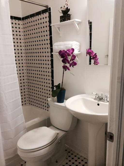 Full Bathroom with vintage fixtures