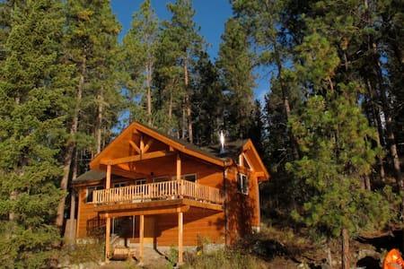 Flathead Lake Cabin! - Zomerhuis/Cottage