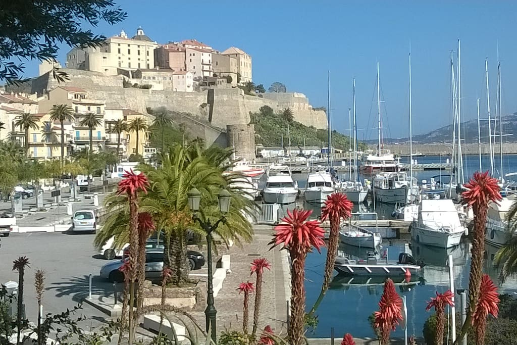 Chambre d 39 h te vue mer apartments for rent in calvi for Calvi chambre hote