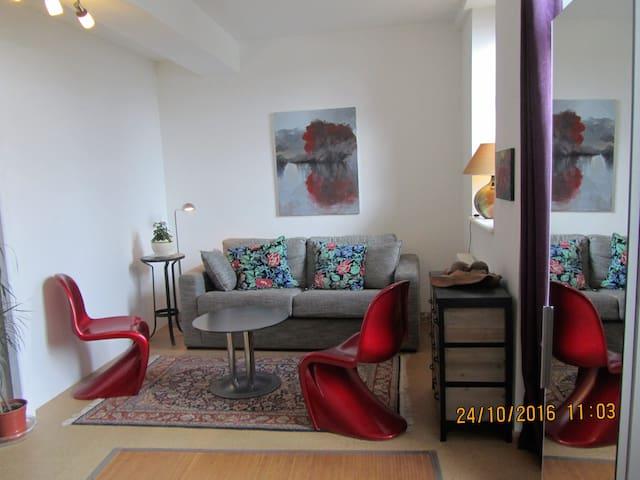 Gîte Tournus belle vue sur Saône - Tournus - Apartmen