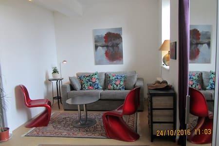 Gîte Tournus belle vue sur Saône - Tournus - Apartment
