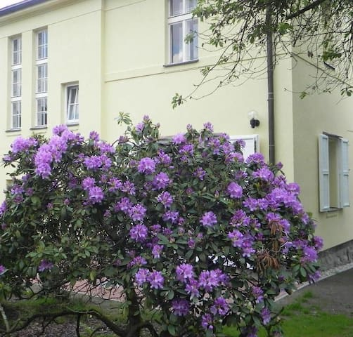 Home Away From Home (4-rooms) - Lviv - Casa