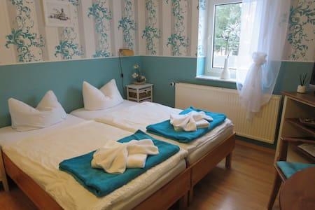 Gemütliches Doppelzimmer in Dresden - Dresden