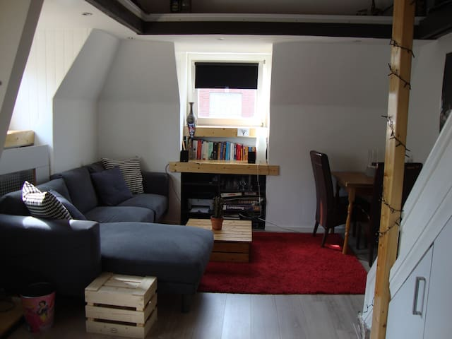 Luxurious apartment in city centre - Maastricht - Appartement