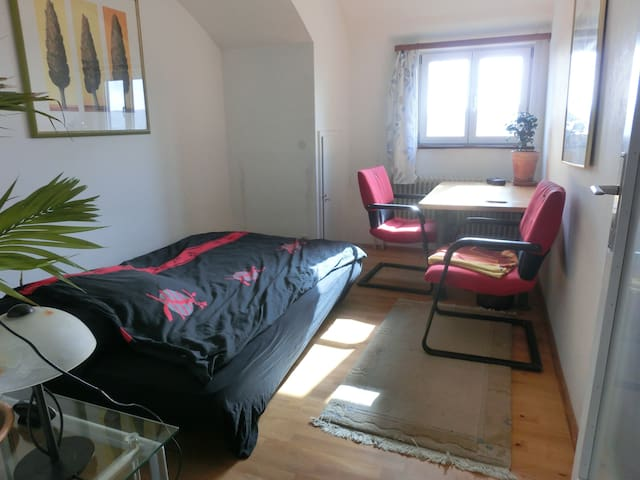 Nice, bright and quiet room - Tübingen - 獨棟