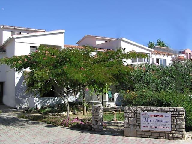 Apartments Mare Nostrum - A-2 - Povljana - House