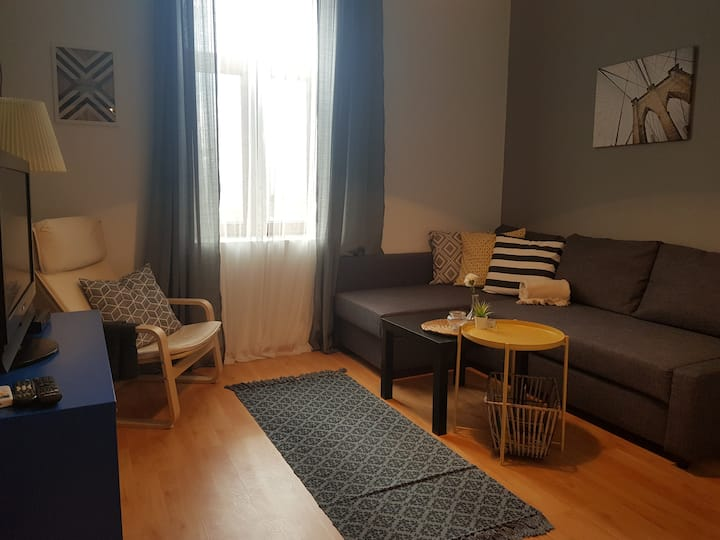 Radomir Downtown Apt. 5  *Brand New*