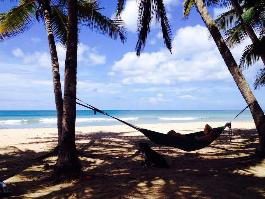 Playa Grande, Las Palmeras