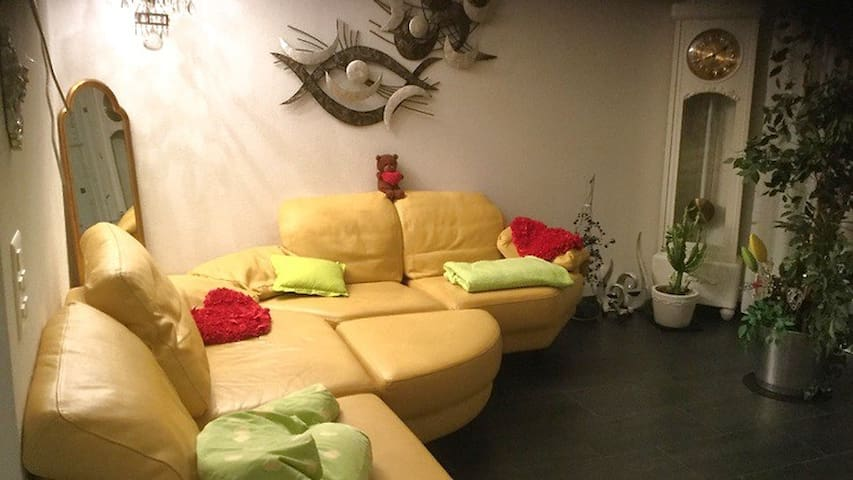 Privatwohnung mit sehr guter verbindung zur Messe - Allschwil - Apartment