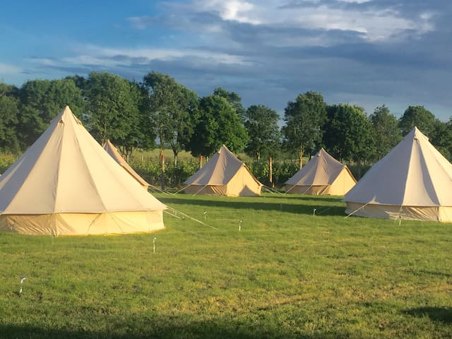 Tinwood Estate Glamping - West Sussex