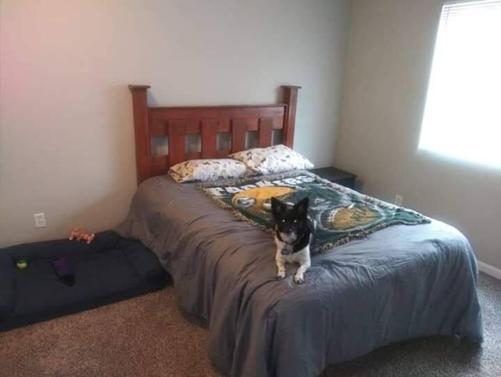 Single Bedroom in Apartment