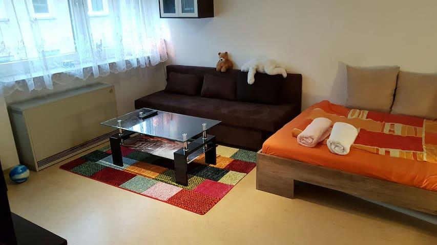 Gemütliche Wohnung im Herzen Mannheims - Mannheim