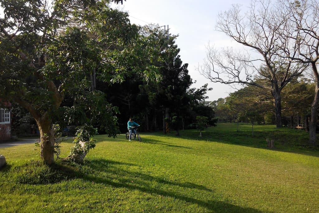 玉蟾園風景