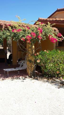 Peonia rosa vista mare - Peonia Rosa - Casa