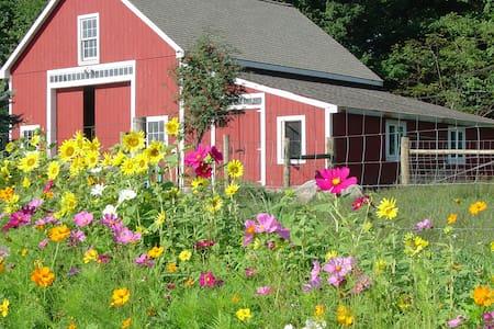 Bryn Meadow Farm B&B & Studio - Charlotte
