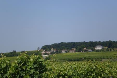 Vignoble du cognac et  églises romanes