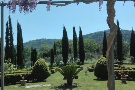 Fattoria Vista di Lupo -app.to 2