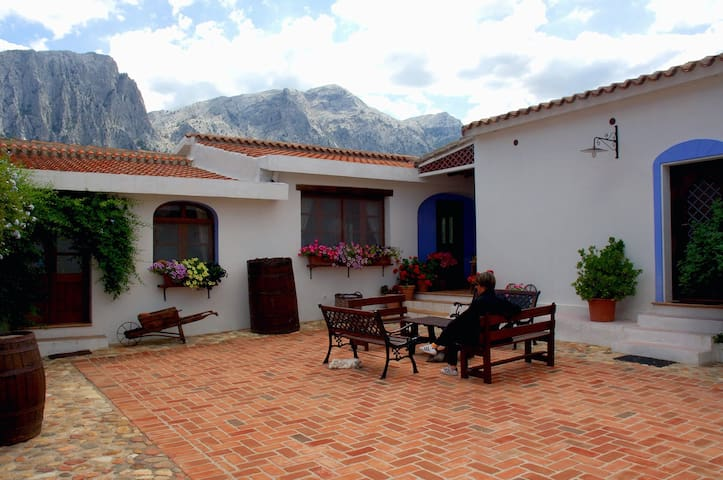 GUTHIDDAI FARM IN FRONT OF MOUNTAIN - Oliena - Bed & Breakfast
