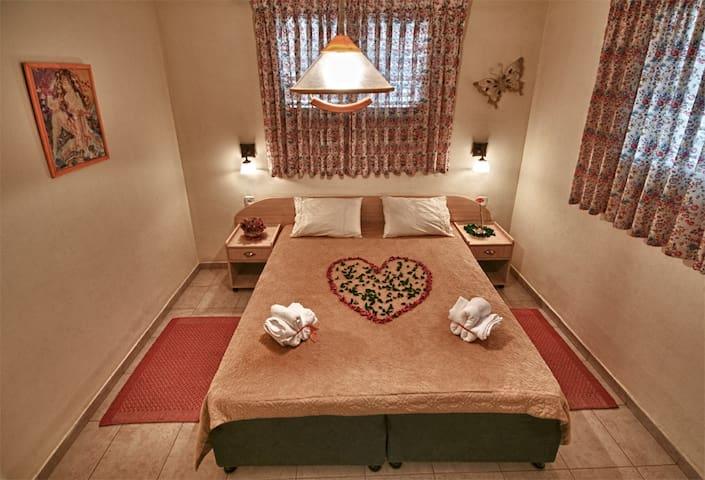 Private room in Arad - Arad - Dům