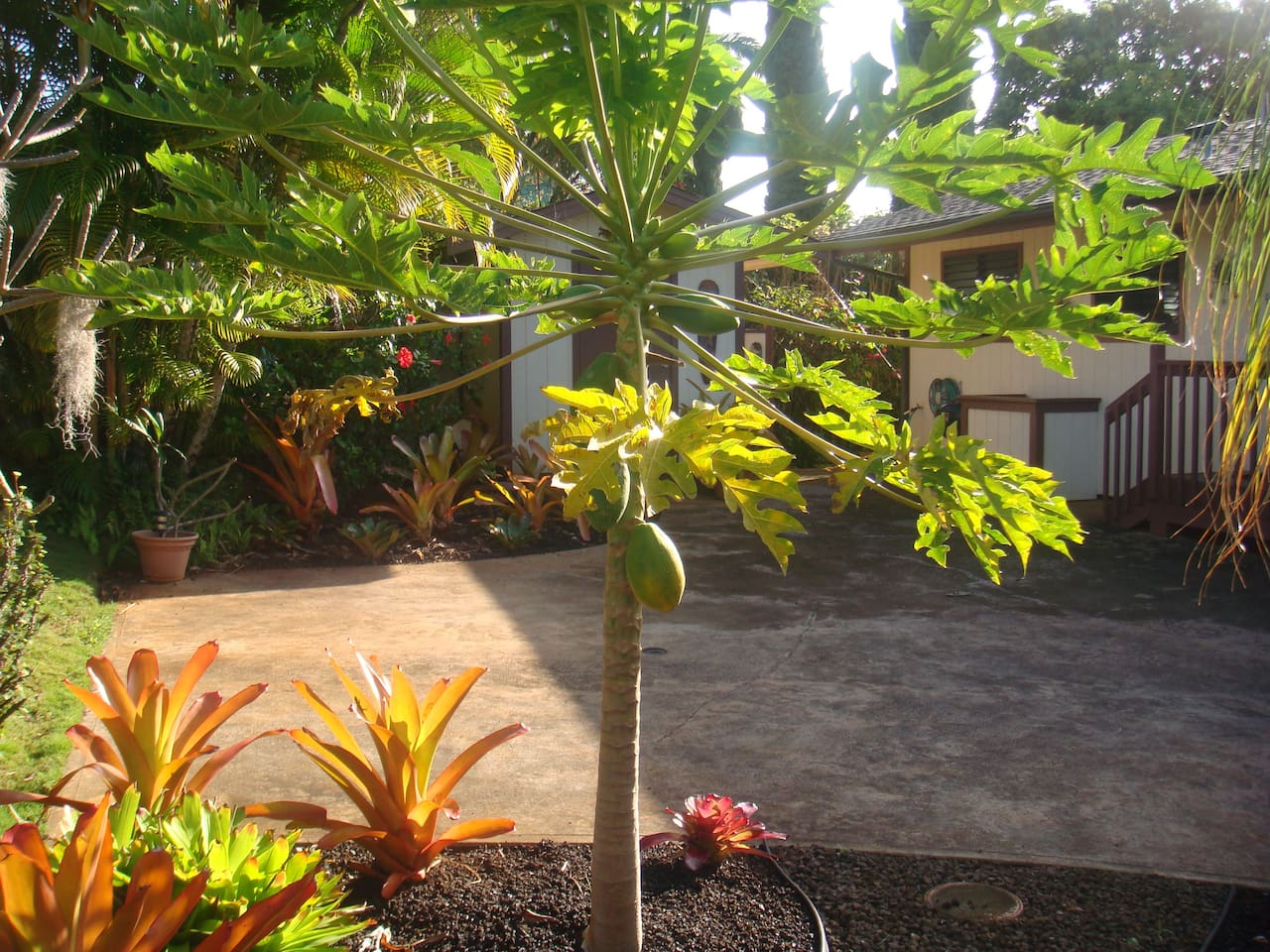 ^ op 20 Hanapepe Vacation entals, Vacation Homes & ondo entals ...