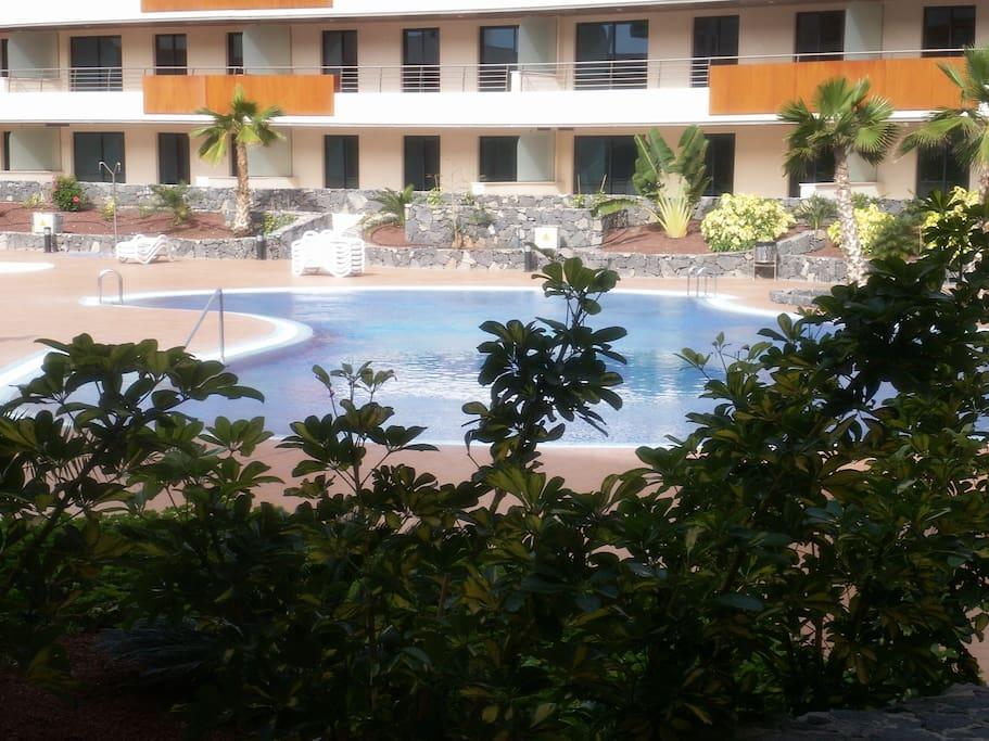 this is our communal pool area.