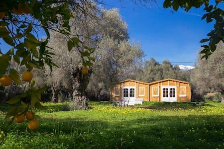 Ecochic cabin in an organic farm - ออร์จิวา - กระท่อม