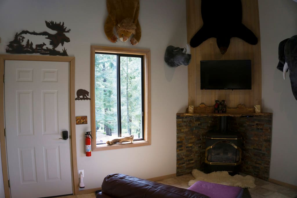 Entry area with fire place