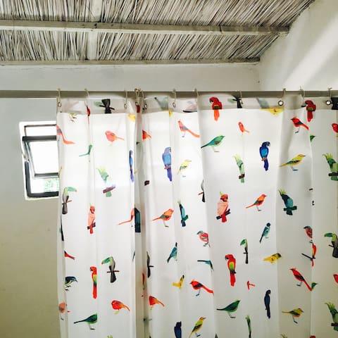 La salle de bain, une baignoire et des oiseaux!