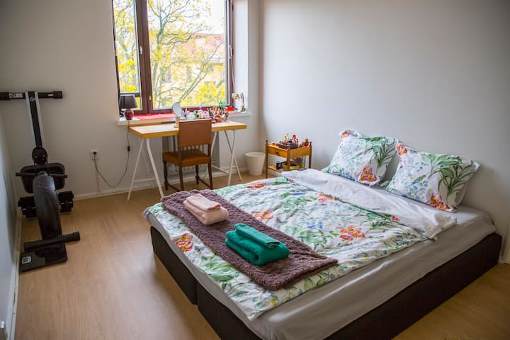Cozy room in the beautiful Eira district