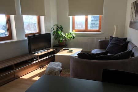 Two Room Apartment in Wennigsen