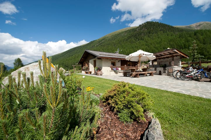 Mountain chic chalet - Livigno - Casa