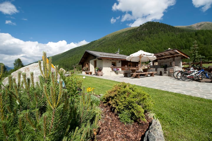Mountain chic chalet