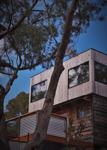 Treetop escape in central Hobart