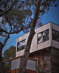 Treetop escape in central Hobart - South Hobart