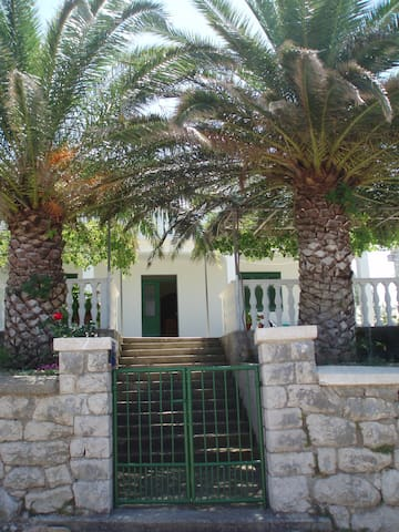Beautiful vacation on Lun,Pag - Apartment Maslina - Lun - Daire