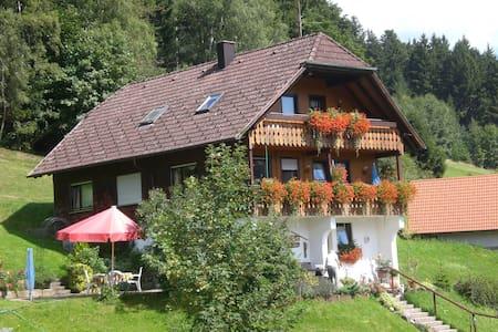 Wandern und Genuss am Nationalpark Schwarzwald - Baiersbronn - Apartmen