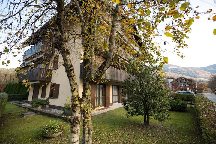 Monolocale piano terra e giardino pos strategica - Carisolo - Apartment