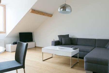 ROOFTOP 1BR APARTMENT|CENTER GVA - Genève - Lägenhet