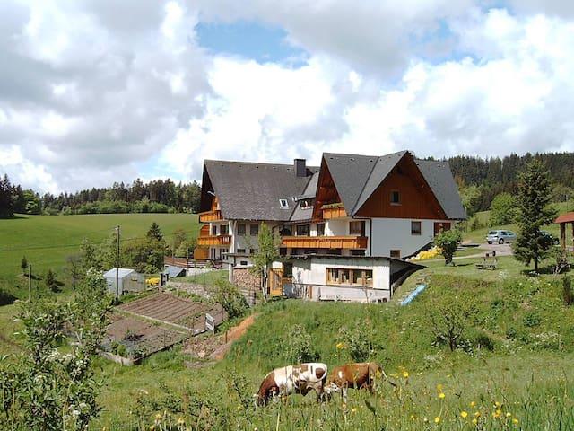 Schöne Ferienwohnung für 2-3 Person - Sankt Georgen - アパート