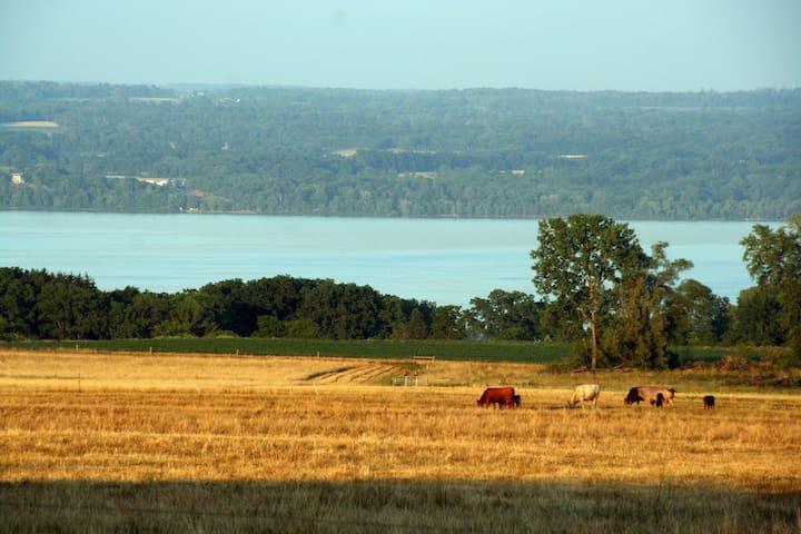 CayugaMorningStar Finger Lakes - Like a Fine Wine - Romulus, Finger Lakes - Bed & Breakfast