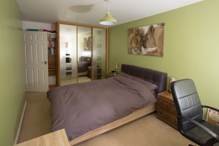 Large double room in clean & organised town house