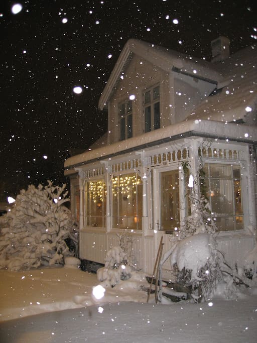 Winter...if snow