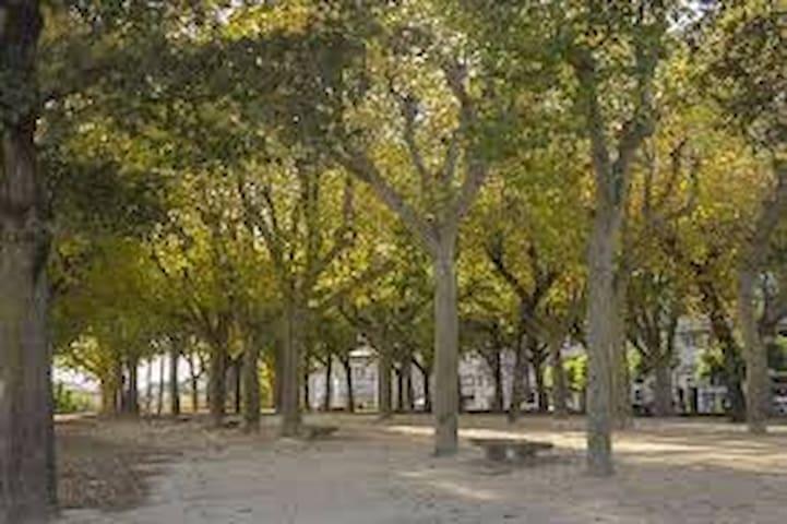 En el centro de Pontevedra