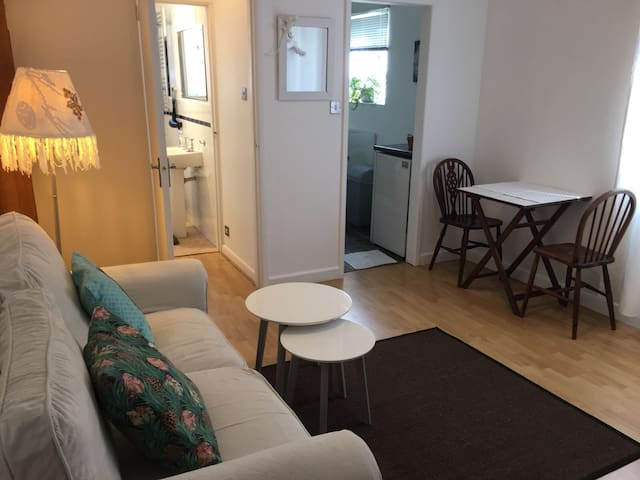 1 Bed Flat in Central Guildford