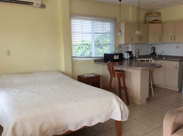 Bocas Condo in the Heart of Town