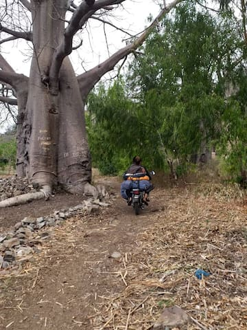 You'll travel by motorbike to Muluma village where you will camp.