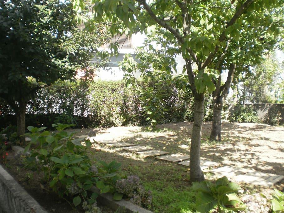 Jardim -Atrás da casa