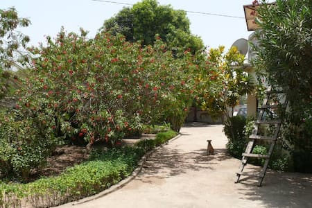 Bed & Breakfast in Gambia - Banjul
